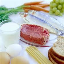 B12 Rich Foods – List