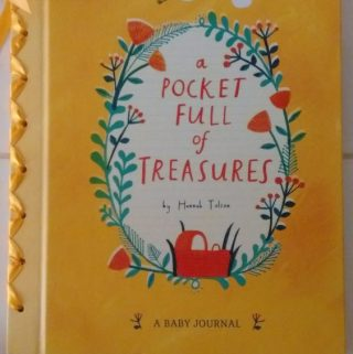 Capture Baby's 1st Year with A Pocket Full of Treasures
