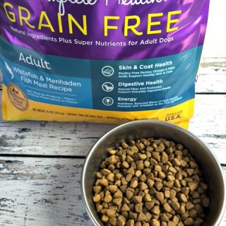 Create Wellness for your Special Dog  #GrainFreeForMe