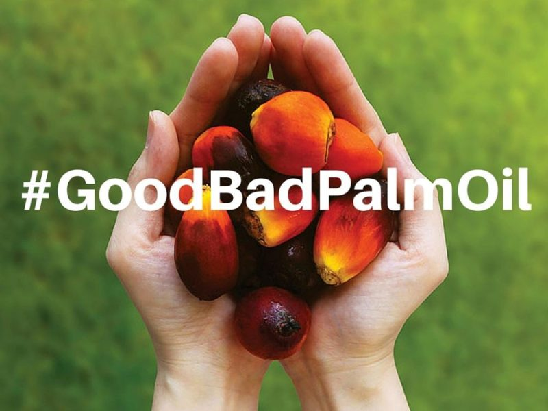 It's Time To Say Yes To GOOD Palm Oil