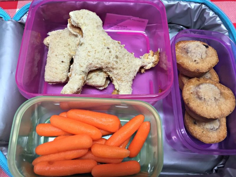 Tips for Making Back to School Lunches Rock!