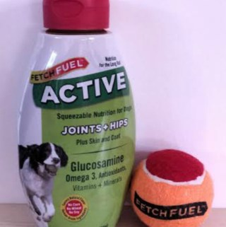 Keep Your Canine Active with FetchFuel™