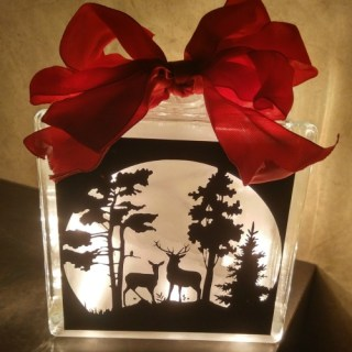 Creations By Janice Gifts Makes Beautiful Glass Blocks