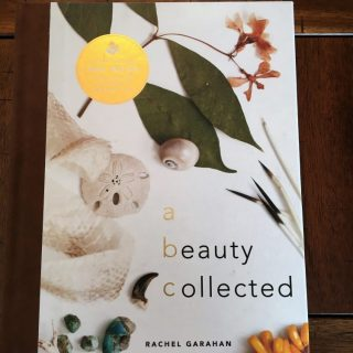 A Beauty Collected is an enchanting children's ABC book