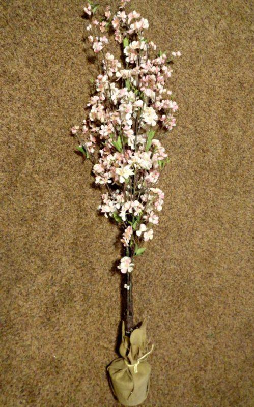 Silk Plant Tree