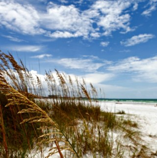 Make Plans to Visit One of These Beautiful Locations While in Florida
