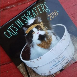 Coolest Cat Calendars for 2018