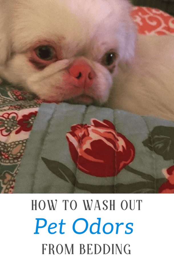 How To Wash Out Pet Odors From Bedding For Good #ad #stayfresh @FebrezeInWash