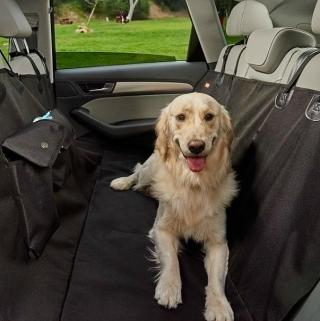 Make Holiday Travel with Pets Cleaner and Easier