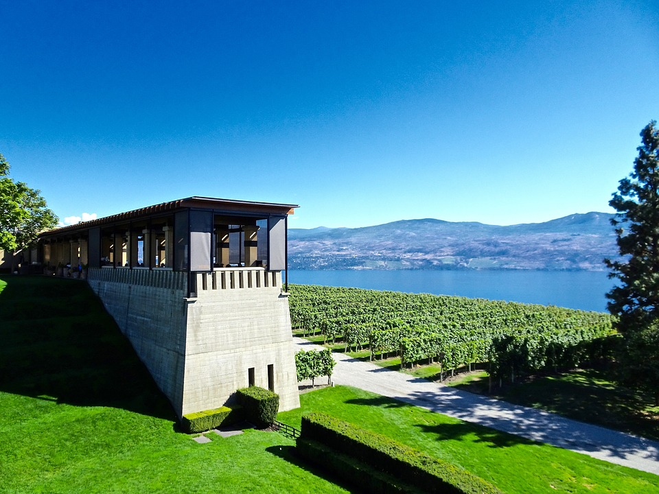 Mission Hill Wine Tour Experience