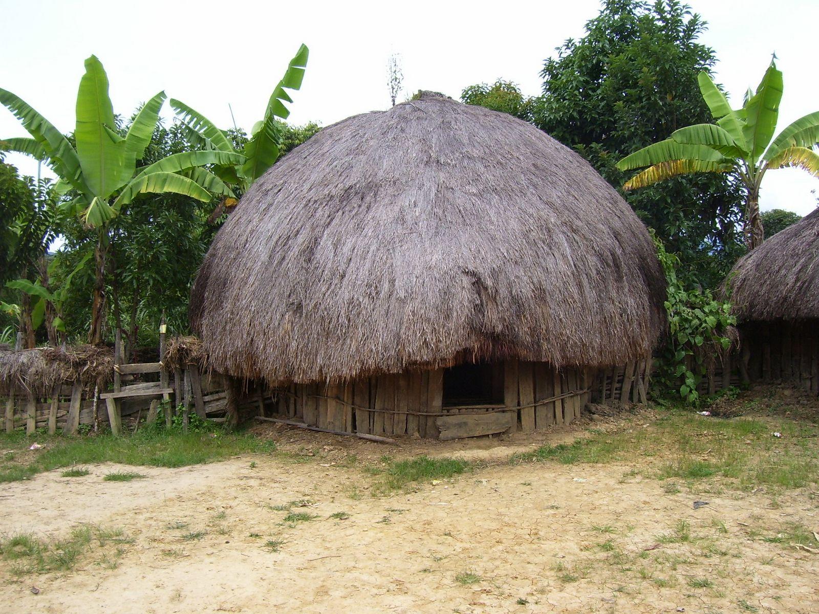 Rumah Adat Tradisional  Seni Budaya Indonesia