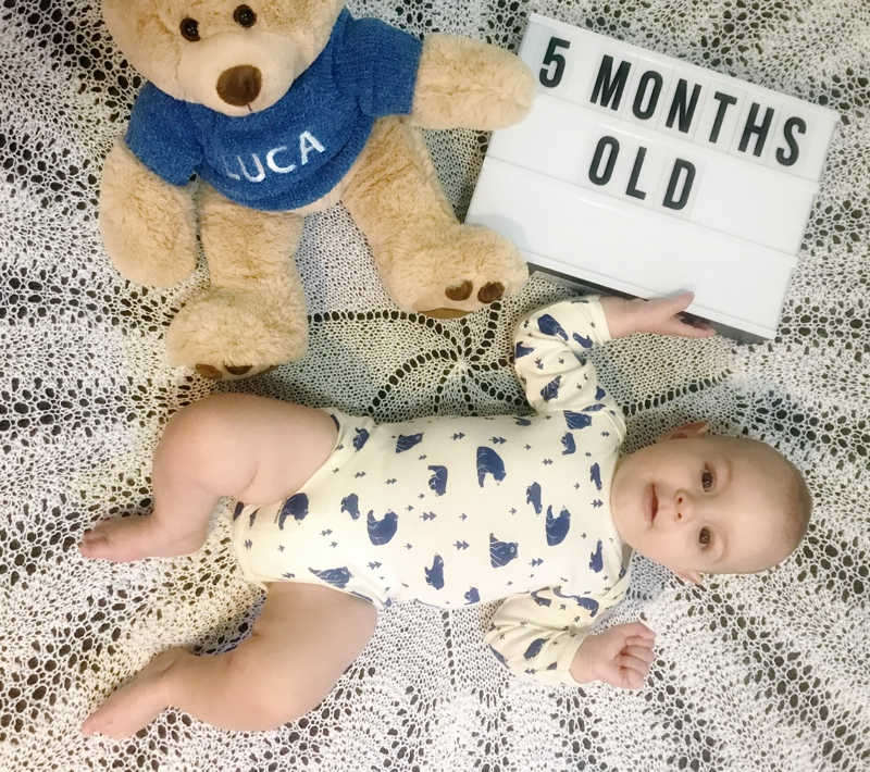 baby 5 months old photo