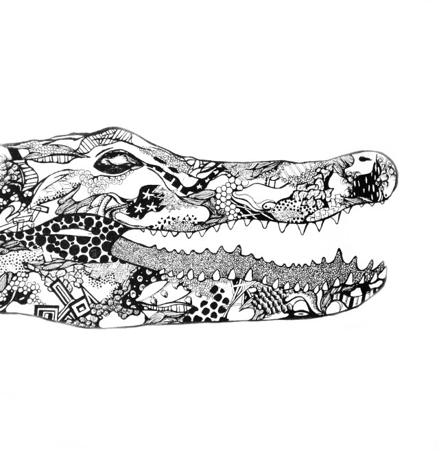 Alligator head_Kelsey Montague