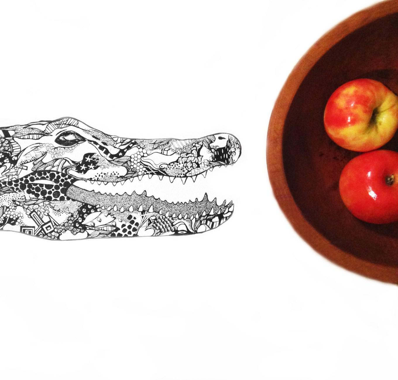 Crocodile apple copy
