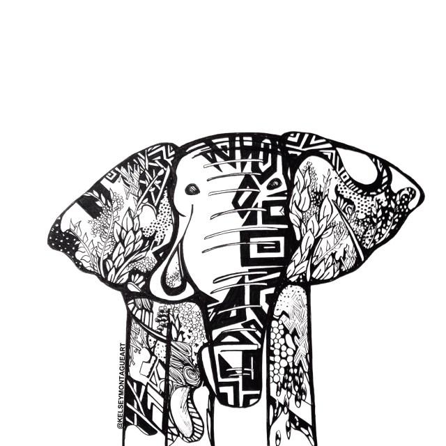 Kelsey Montague elephant