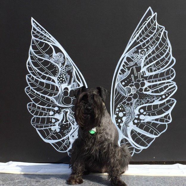 Doggy Wings