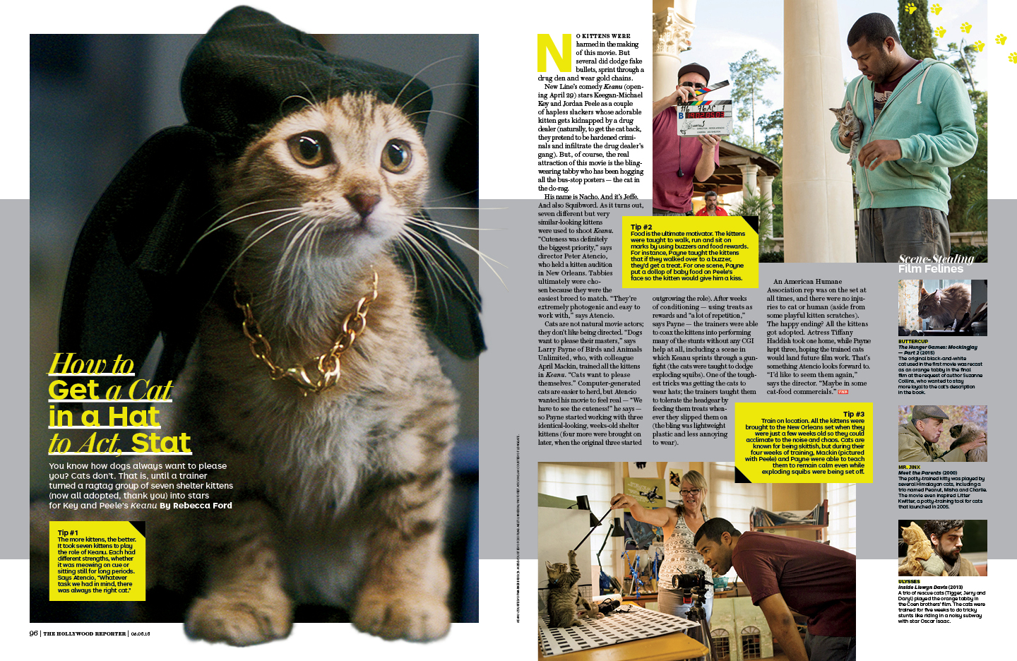 How to Get a Cat in a Hat to Act, Stat / The Hollywood Reporter / 5.5.16 / kelsey stefanson / art direction + graphic design / yeskelsey.com