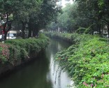 7 gz-dongshan dist-canal-2015