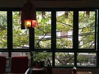 img_2842-hn-nola-five-windows