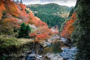 Koyo Tranquility Along The Kiyotakigawa River