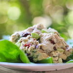 Terrific Tarragon Chicken Salad Recipe