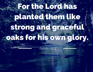 rooted in isaiah