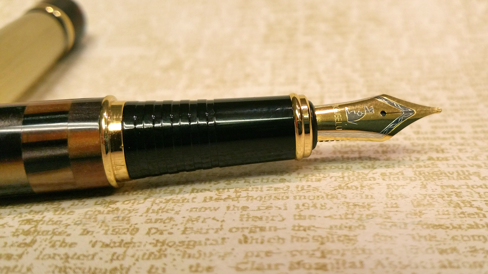 Kaigelu 336 Fountain Pen nib & section