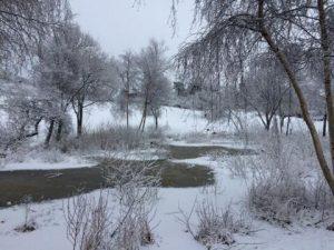 Sne landsskab
