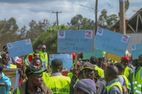 Donkey owners display placards with educative messages