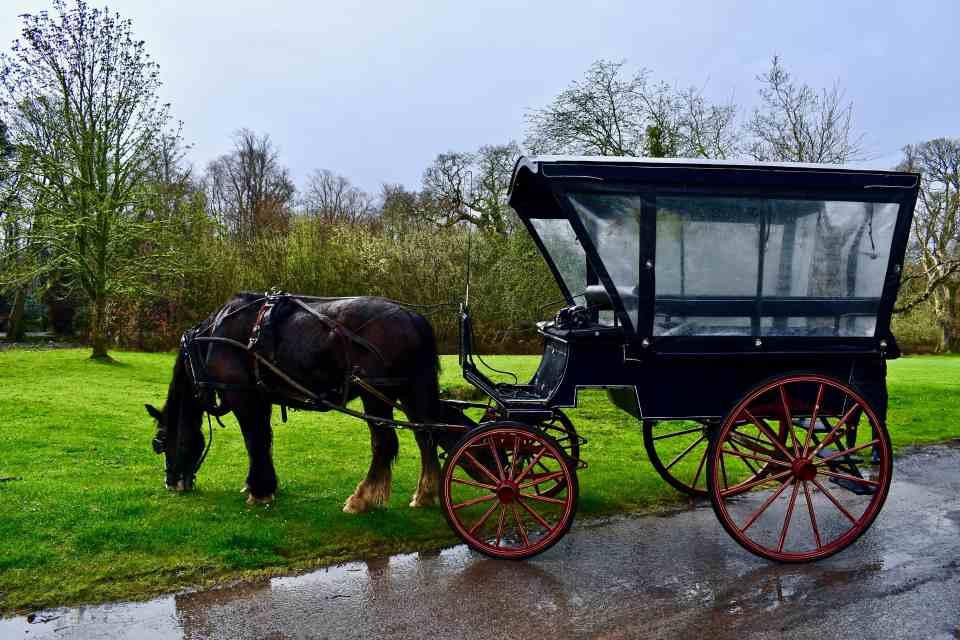 Jaunting Cart in Killarney, Ireland Photo by KendellKreations