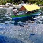 Wisata Hiu Paus di Gorontalo, Terbaik dan Paling Mudah Diakses di Indonesia
