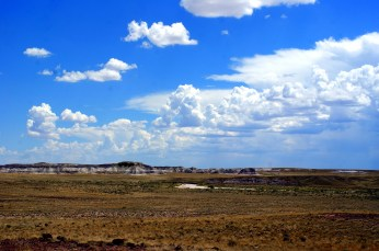 View from the the Agate House in the Petrified National Monument in Arizona. Photo/Kendra Yost