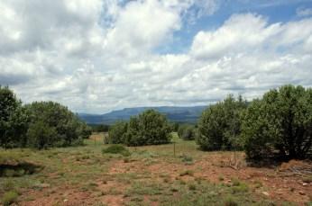 View of the Mogollon Rim from Shoofly Village Ruins in Payson, Arizona. Photo/Kendra Yost