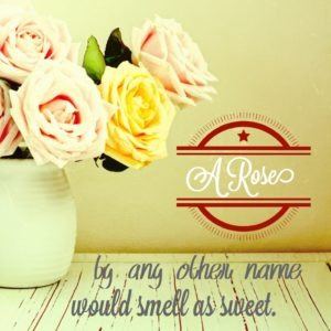 A rose's scent might be impervious to a name change, but I think a blog's name carries quite a bit of significance.