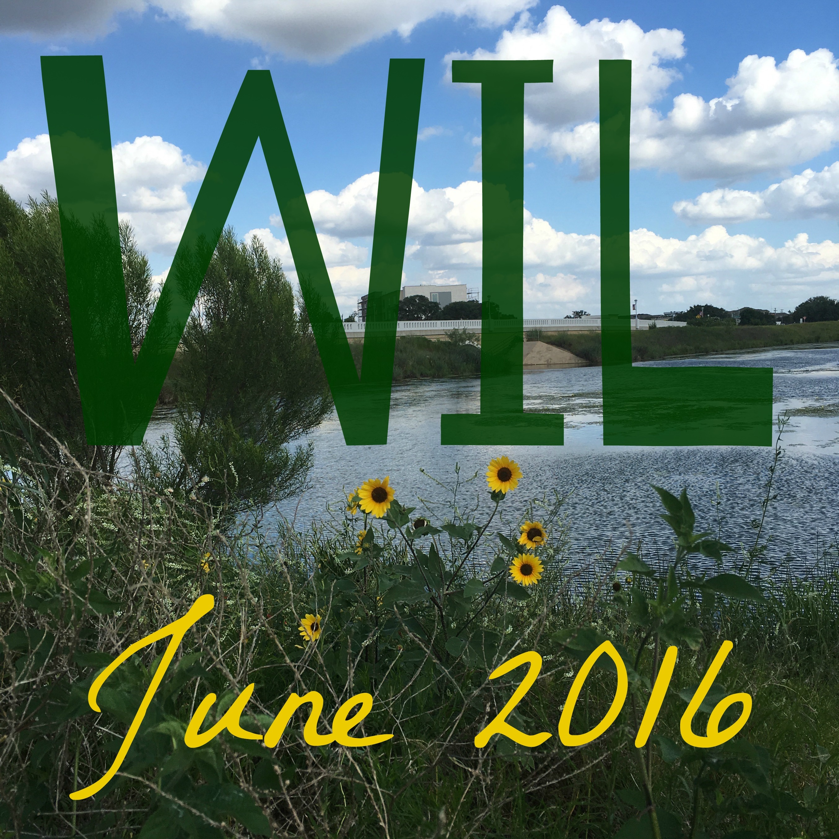 Sixteen Things I Learned in June {2016}
