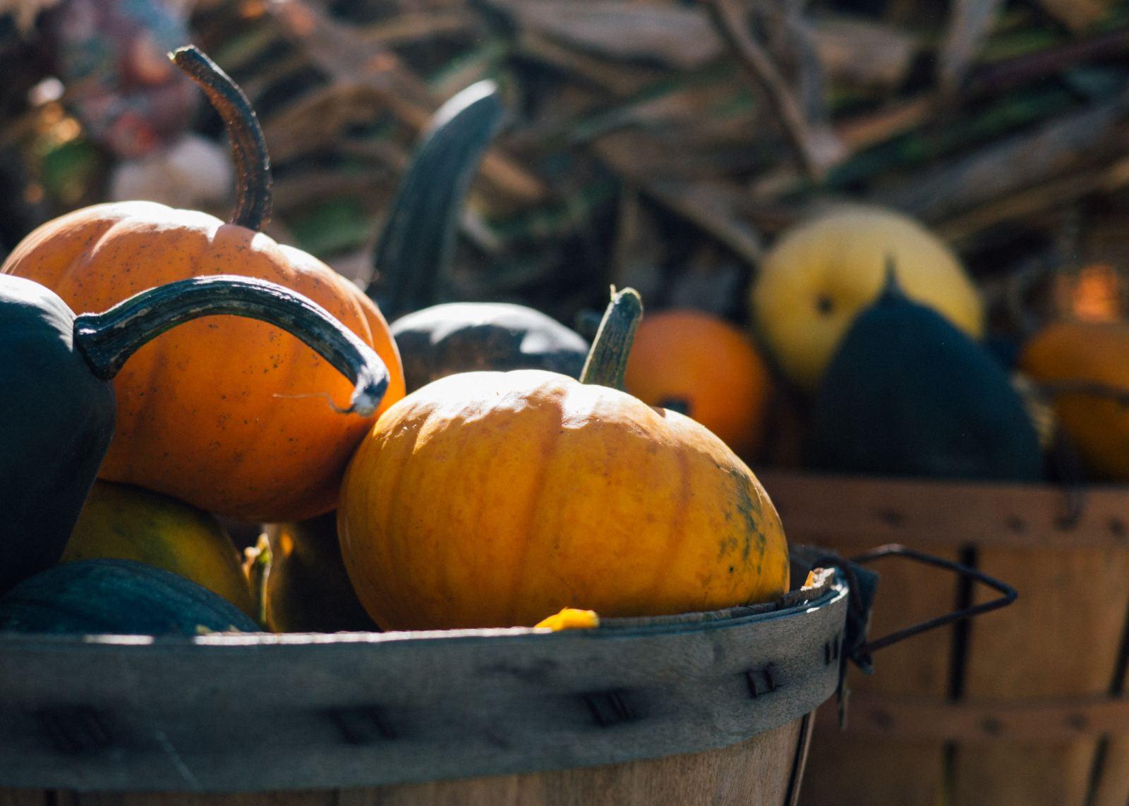 Cinco de Wednesday: Fun Halloween Activities
