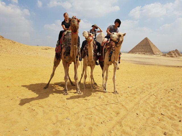 asians-pyramids-camel