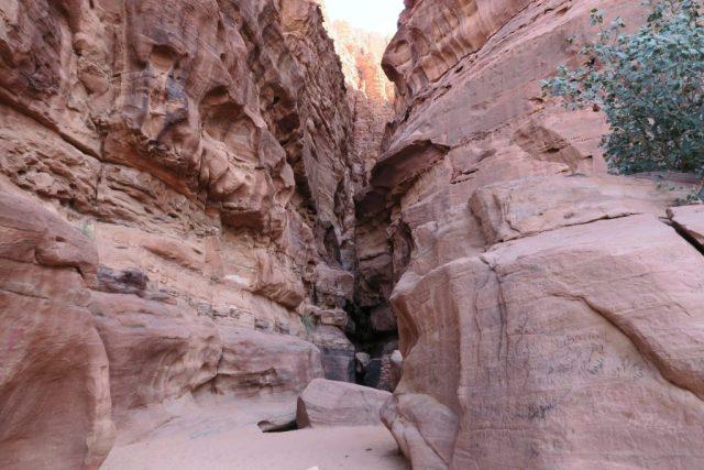 wadi-rum-cave-art