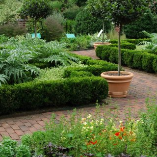 NYBG's Edible and Ornamental Gardens with Kristin M. Schleiter