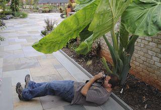 2011_0917_Paul_Ciener_Botanical_Garden.NC_(123)