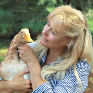 Raising Ducks with Lisa Steele