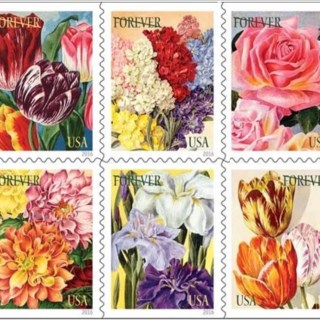 Flower Stamps with William Gicker
