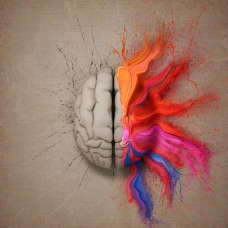 The Creative Brain