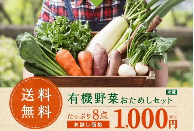 食材宅配パルシステム 有機野菜お試しセット