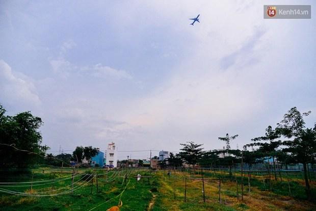 Chuyện những người miền Tây cuối cùng nán lại khu đất hoang Sài Gòn để chạy dây kiếm sống - Ảnh 2.