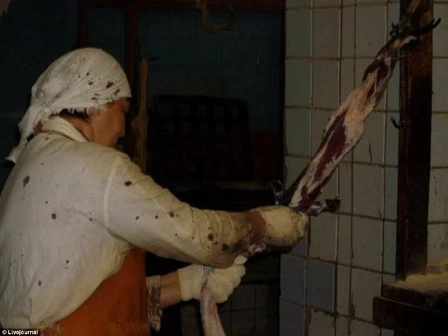 Không chỉ riêng cá sấu, nhiều con vật khác cũng phải chịu nỗi đau tận cùng cho ngành thời trang - Ảnh 7.