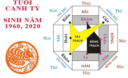 canh-ty-2020