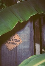Caution - Playing