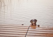 Jada @ the lake