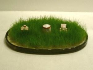 1406-6絹糸草